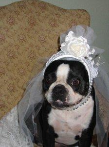 Trudy Bride