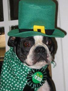 Trudy Irish