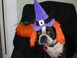 Trudy Witch