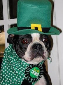 Irish Trudy